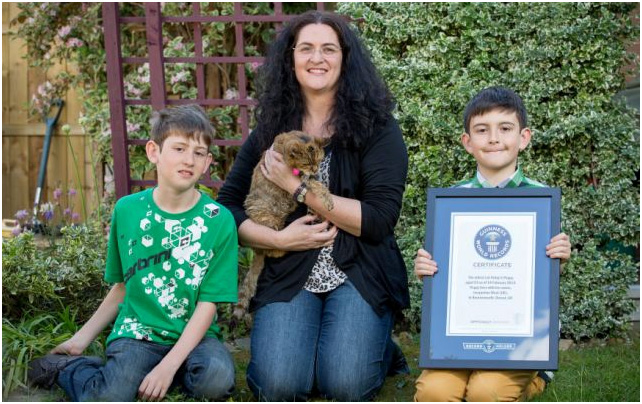 record breaking cat